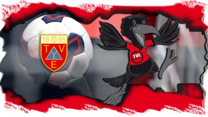 3. Sieg im 3. Spiel – TVE D-Jugend